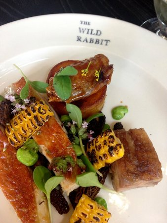 The Wild Rabbit: Fab main with corn and morels