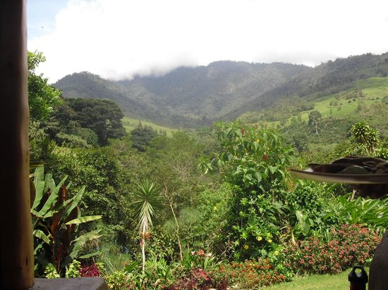 Rio Chirripo Lodge & Retreat: the view