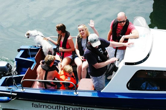 Falmouth Boat Hire: Dog friendly.
