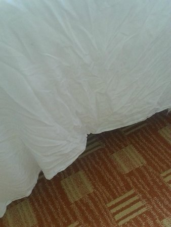 DoubleTree Resort by Hilton Myrtle Beach Oceanfront: Seriously wrinkled bedding!