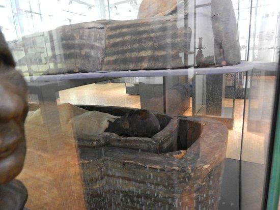 The Manchester Museum: Eygyptian Mummy
