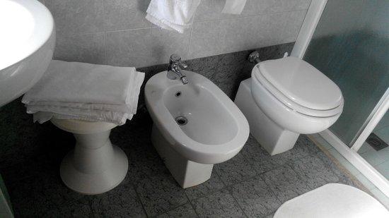 Hotel Rosa: ванная-туалет