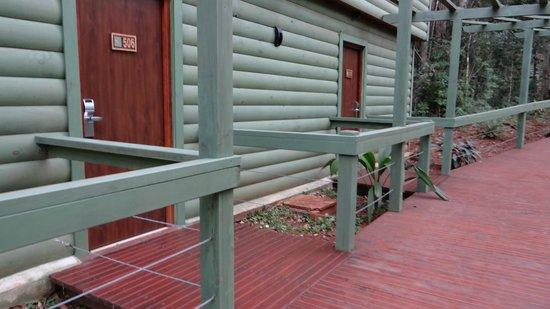 La Cantera Jungle Lodge: las habitaciones