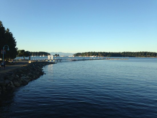 Harbourfront Walkway: Beautiful walkways and gorgeous scenery