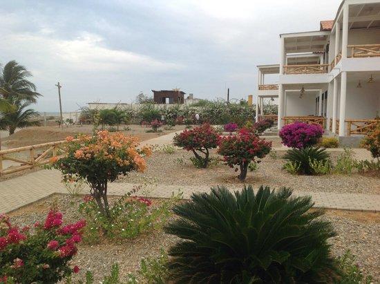 Amotape: zona entre la playa y habitaciones