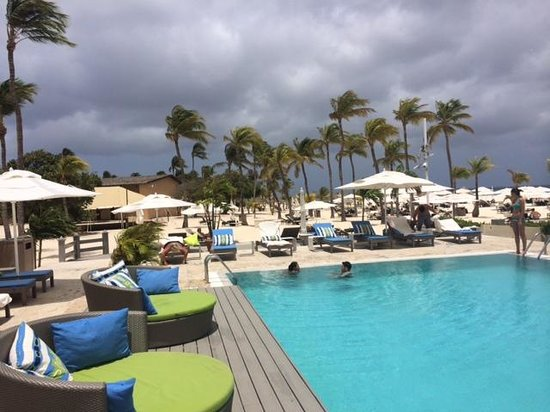 Bucuti & Tara Beach Resort Aruba: Could the pool be anymore gorgeous?