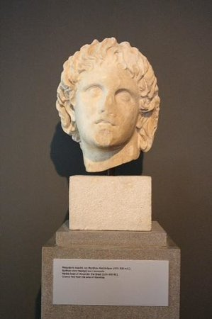 Archaeological Museum of Pella: alexander the great