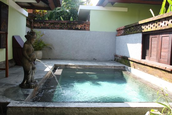 Rama Beach Resort and Villas: private pool in the villa