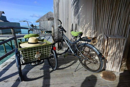Six Senses Laamu : If you don't ride a bicycle, request for a tricycle with an extremely useful basket.