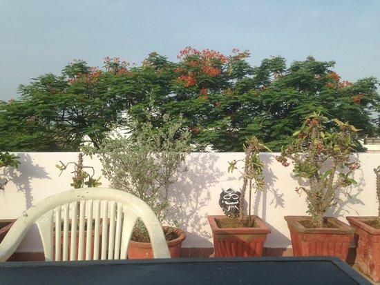 Ikaki Niwas : View from balcony