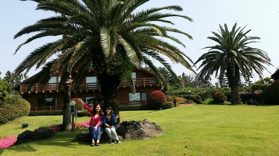 Sunny Day Jeju: Pension behind us