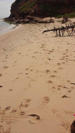 Basin Head Provincial Park : beautiful sand beach