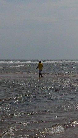 Basin Head Provincial Park : low tide