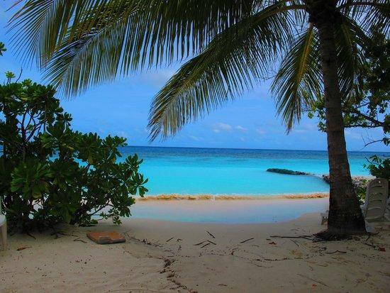 Velidhu Island Resort: View of the beach
