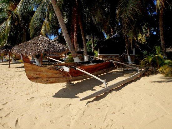 Baobab: impossible d'avoir du poisson plus frais (bateau des pêcheurs)