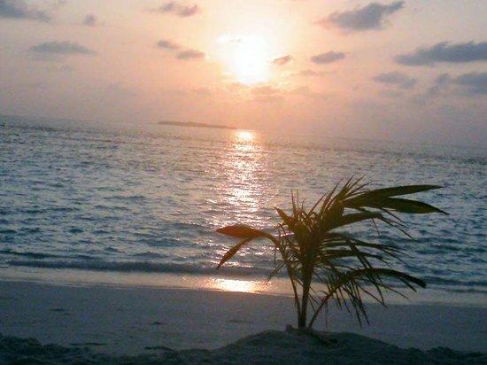 Adaaran Select Meedhupparu : Sunrise from our beach