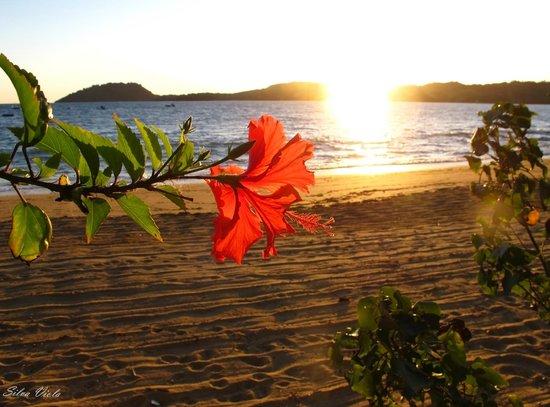 Chanty Beach Hotel : Spiaggia dell'Hotel con tramonto sull'Isola di Sakatia