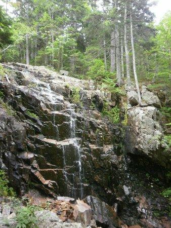 Carriage Roads: Waterfall