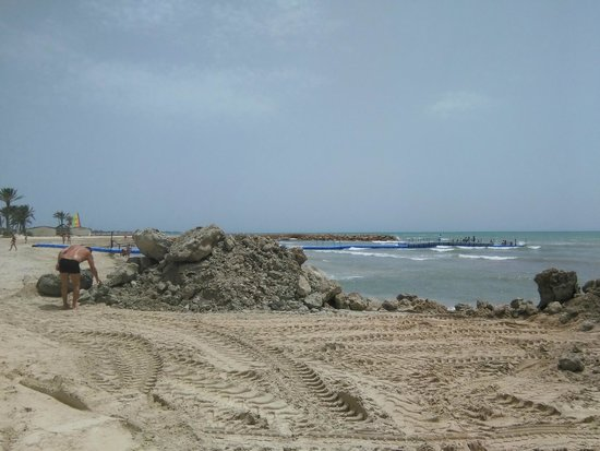 Hôtel Palm Azur: Playa