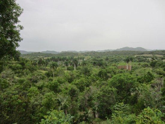 Hotel Playa Pesquero : Superbe paysage