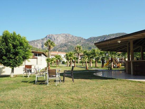 The One Club Hotel: Bahçe