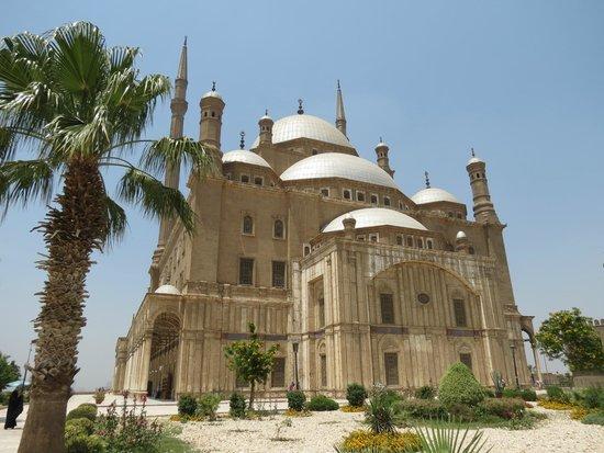 Mosquée Mohammed Ali : x