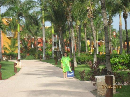 Barcelo Maya Tropical: CAMINANDO POR LOS JARDINES