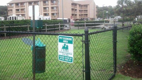 DoubleTree Resort by Hilton Myrtle Beach Oceanfront: Pet Area, little gated fence