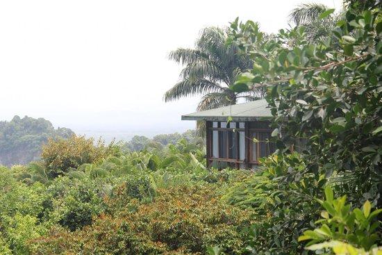 Tulemar Bungalows & Villas: Le bungalow 114