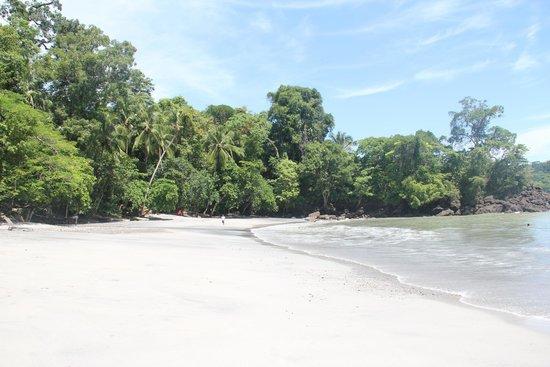 Tulemar Bungalows & Villas: La plage