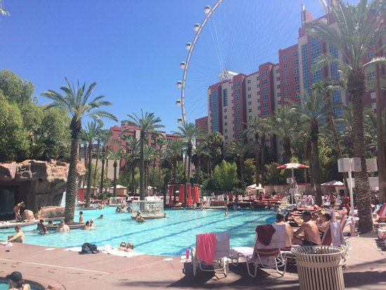Flamingo Las Vegas Hotel & Casino: Go Pool