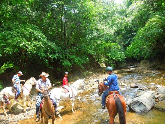 Finca Caballo Loco - Tour a Caballo Costa Rica