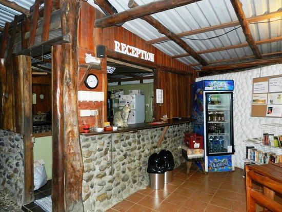 Hotel Entre Dos Aguas : Reception