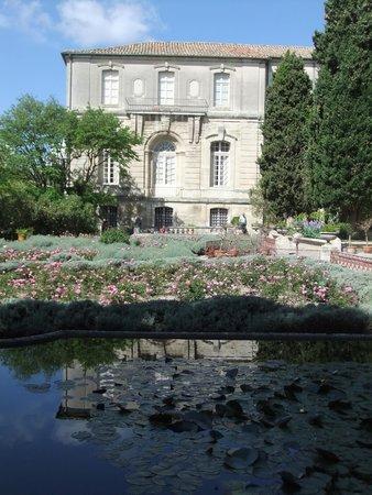 Jardins de l'abbaye Saint-André : Во дворе аббатства