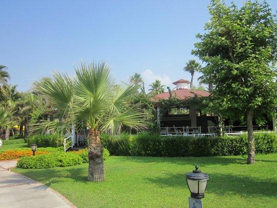 Paloma Grida Resort & Spa: Safran restaurant