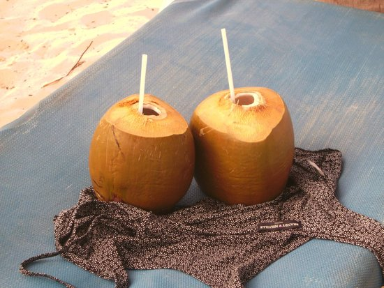 Meliá Caribe Tropical: coconuts freash off the tree