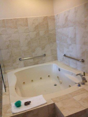 Hotel Presidente : Jacuzzi tub