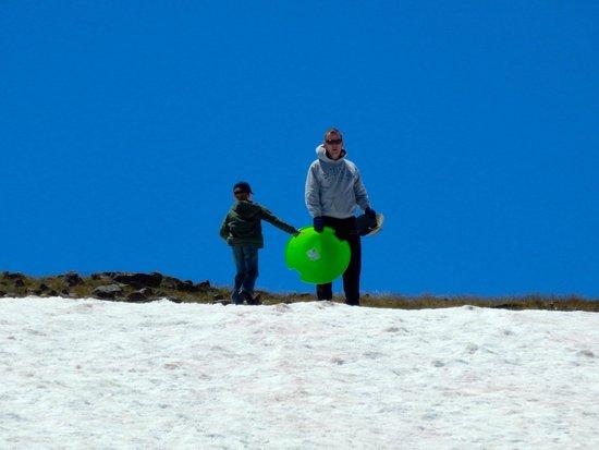7D Ranch: Sledding at Beartooth