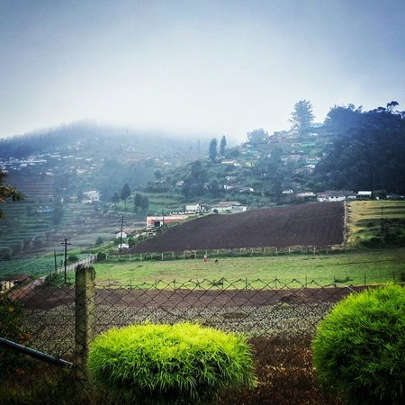 Ooty - Fern Hill, A Sterling Holidays Resort: Morning View from the Room No. 1707