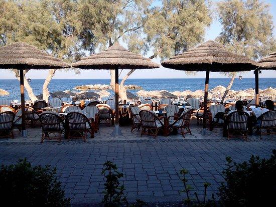 Levante Beach Hotel: Bar dell'hotel sul lungomare di Kamari e spiaggia