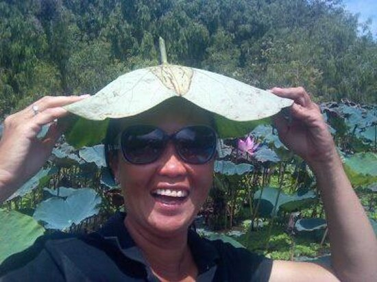 Ms San Tours : shade in the Tra Su Forest