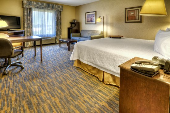Hampton Inn Roanoke Rapids: Standard King