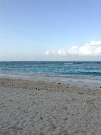 Majestic Colonial Punta Cana : Early morning beach view