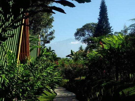 Hotel y bungalows el jardin retalhuleu guatemala for Bungalows el jardin retalhuleu guatemala