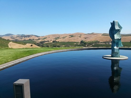 Artesa Vineyards & Winery : Looking out over part of the surrounding area