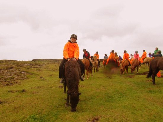 Ishestar Horse Riding Tours: Taking a Small Break