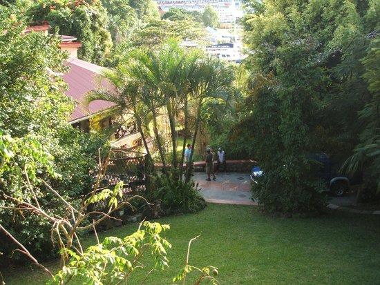 Lotus Chi Garden: The gardens