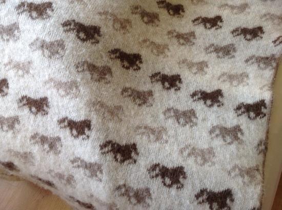 Gauksmyri: Even the blanket had a horsey motif.