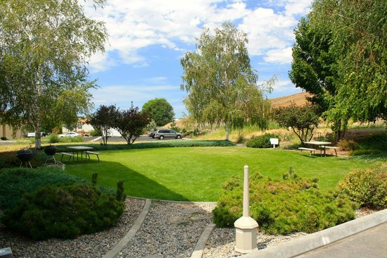 Best Western Plus Vintage Valley Inn: Green Grass with picnic tables and BBQs!