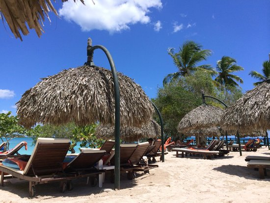 Dreams La Romana Resort & Spa: Preferred Club Beach